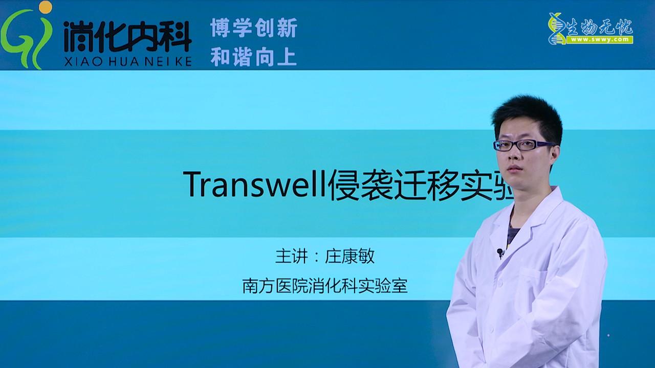 庄康敏:Transwell侵袭迁移实验