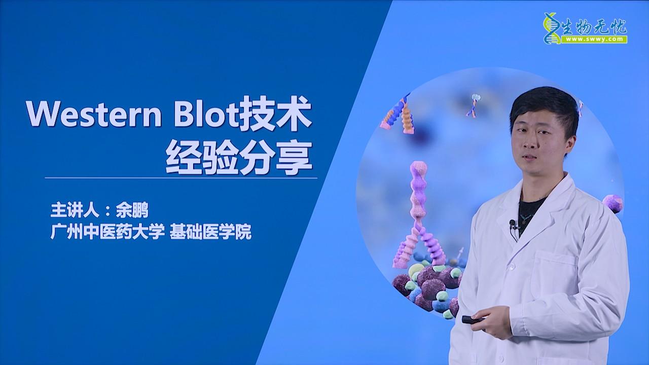 余鹏:Western Blot技术经验分享_第一部分