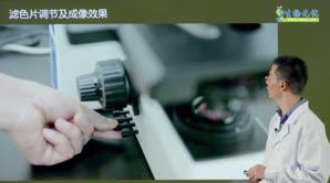 胡宇飞-生物光学显微镜使用及维护