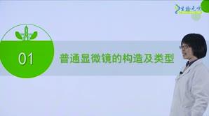许佳玲-荧光显微镜及其应用