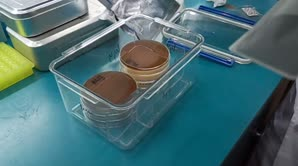 厌氧发生袋培养厌氧菌