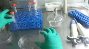 多聚赖氨酸包被细胞爬片圆玻片