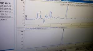 液相色谱使用-数据结果的比较分析